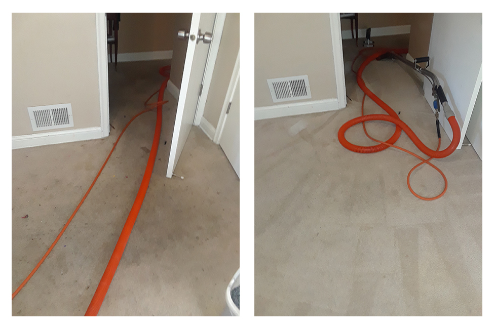 Doorway and entry way carpet cleaning - before and after - Minneapolis, MN