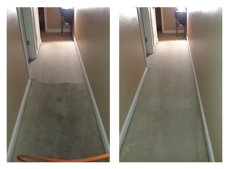 High-Traffic Hallway, Carpet Cleaning Results, Before & After, Minneapolis MN