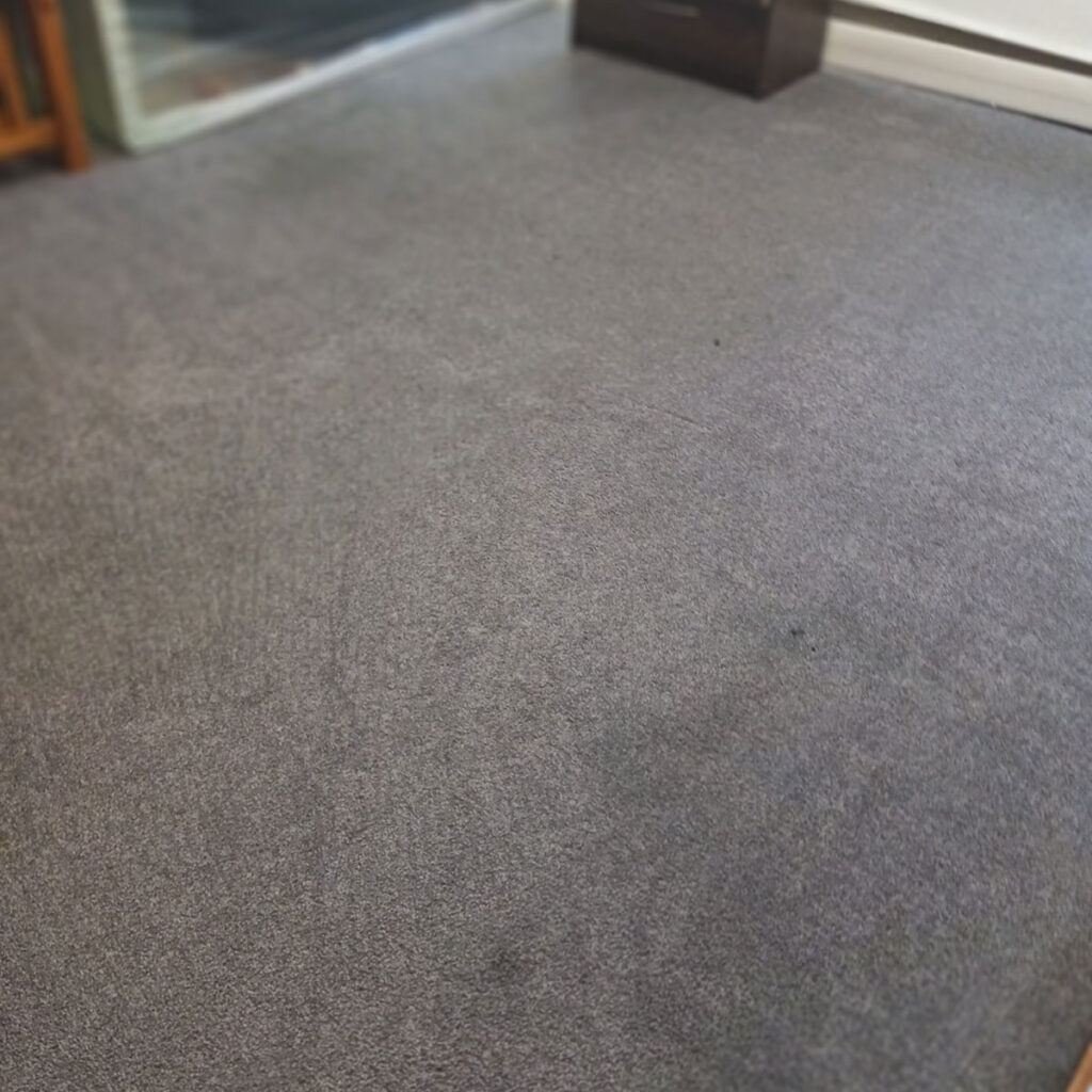 AFTER: Brighten a Room with Carpet Cleaning